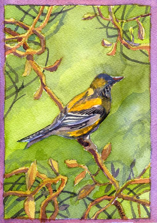 Goldfinch - Michael Lawler Art