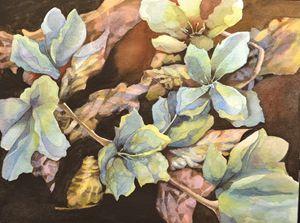 Botanical Study 1