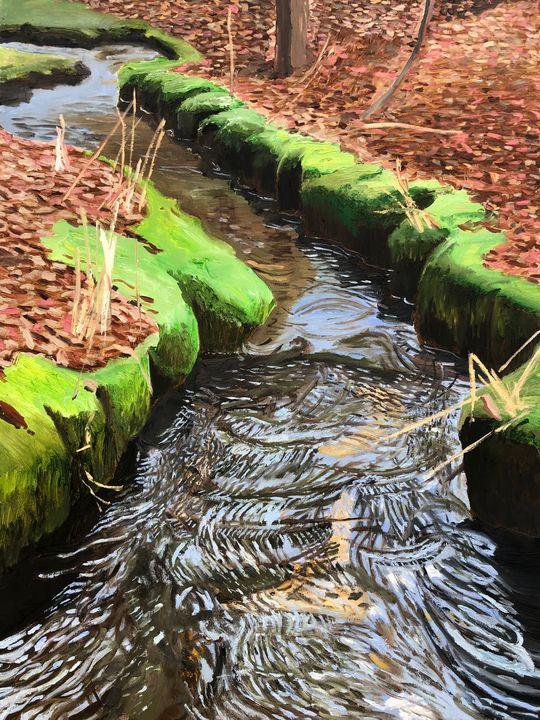 Mossy Stream - Blandine Broomfield