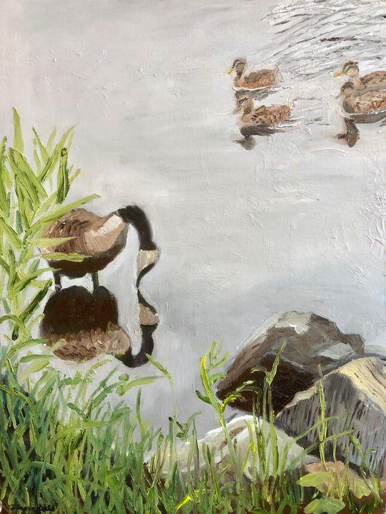 Duck Duck Goose - Blandine Broomfield