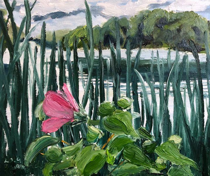 Hibiscus at Centennial Lake - Blandine Broomfield