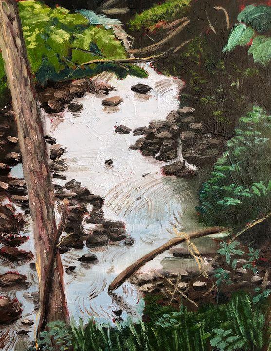 The Stream North of Centennial - Blandine Broomfield