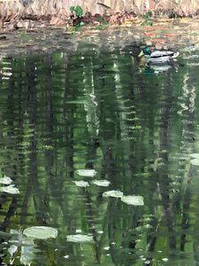 Harmans Pond