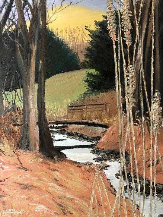 Evening on Plumtree Run - Blandine Broomfield