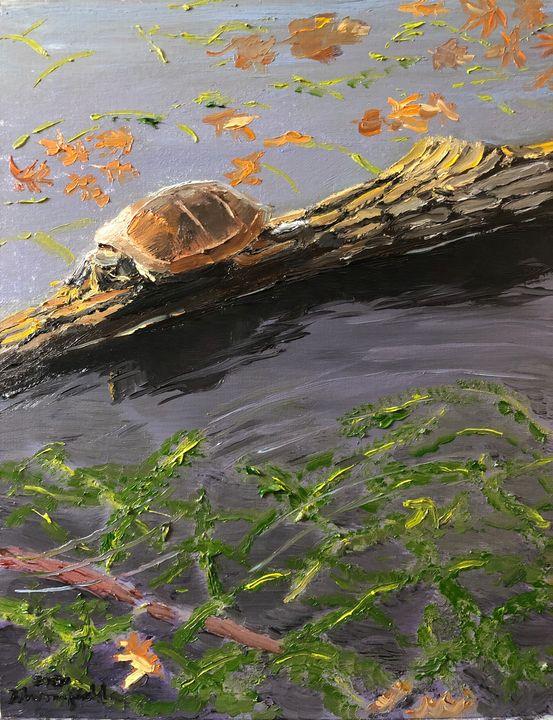 Turtle Near the Pond Weeds - Blandine Broomfield
