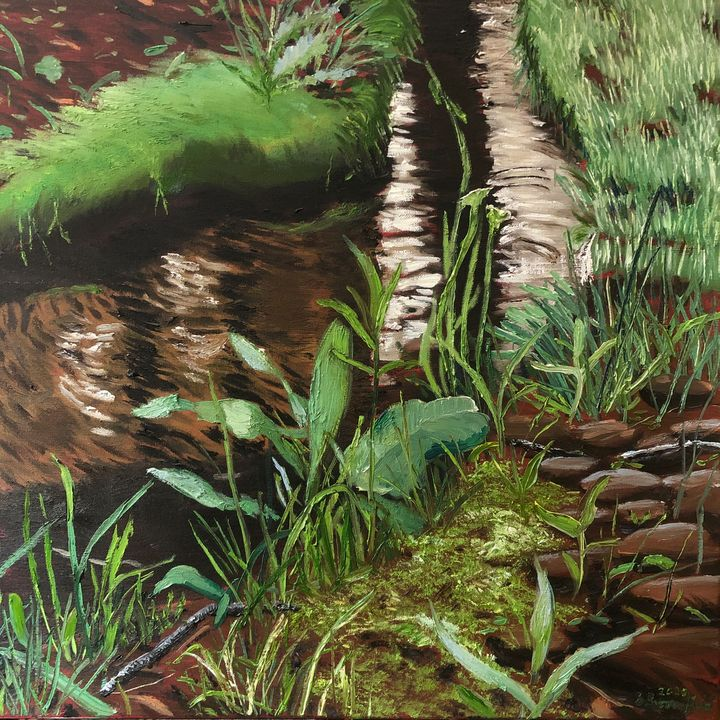 Spring Growth on Stony Run - Blandine Broomfield
