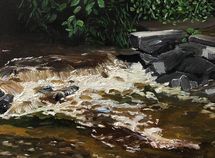 Gesna Road Waterfall After a Rain - Blandine Broomfield