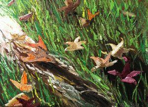 Early Morning Rivulet - Blandine Broomfield