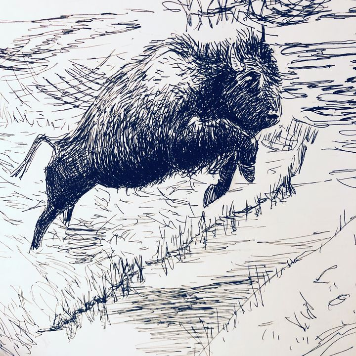 Leap Like a Wild Bull - Blandine Broomfield
