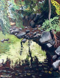 Rick Creek Tributary - Blandine Broomfield