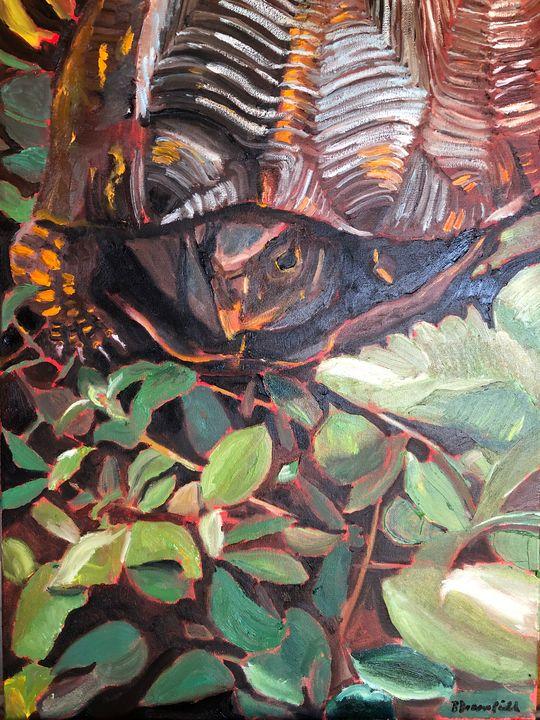 Box Turtle - Blandine Broomfield