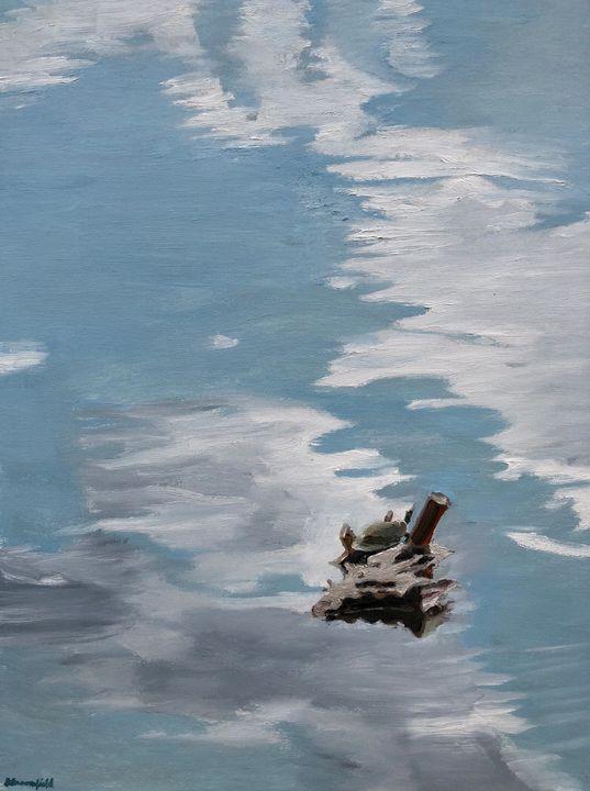 Sky in the Turtle Pond - Blandine Broomfield