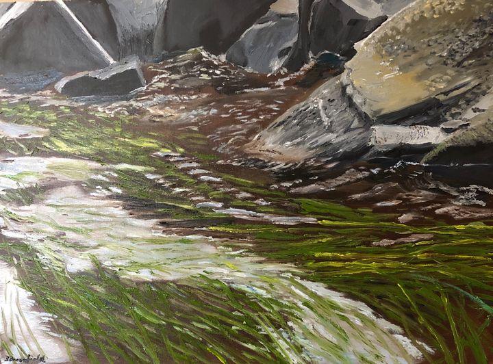 Susquehanna Shoreline - Blandine Broomfield