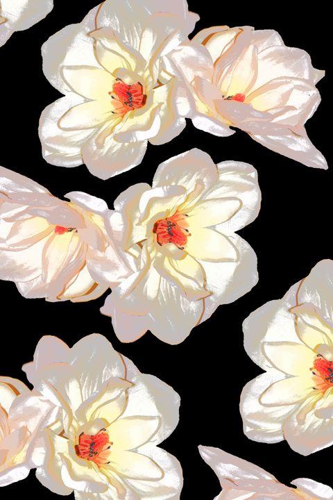 Magnolia - ScenesFromAfar
