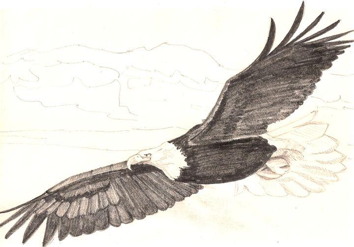 Wings Like Eagles - Elysia Larson Studio