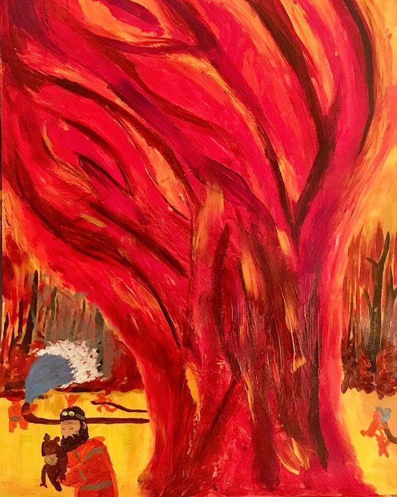Fires in Australia - Anthony Fant