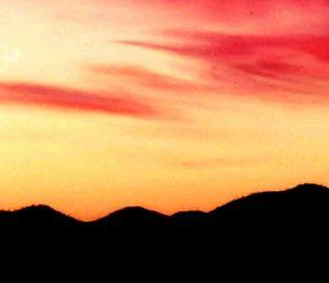 Desert silhouette night
