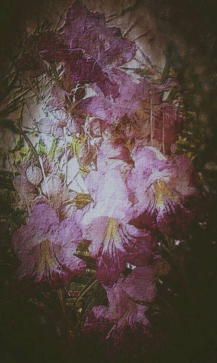 Flowers in the dark - BeholdersEyes