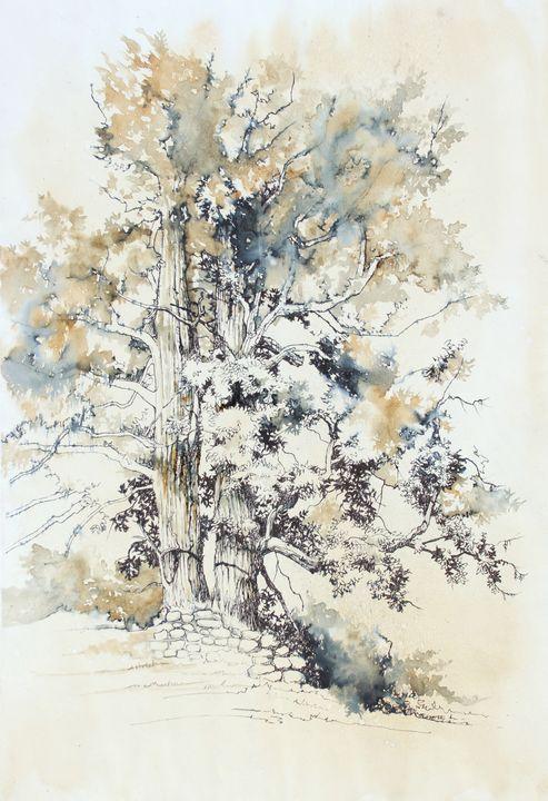 Tree - Widok