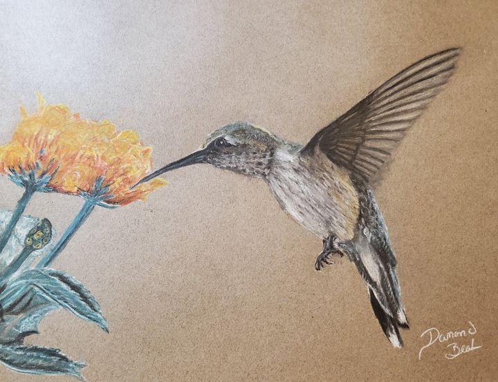 Hummingbird w/orange and yellow flow - Damond seth beal