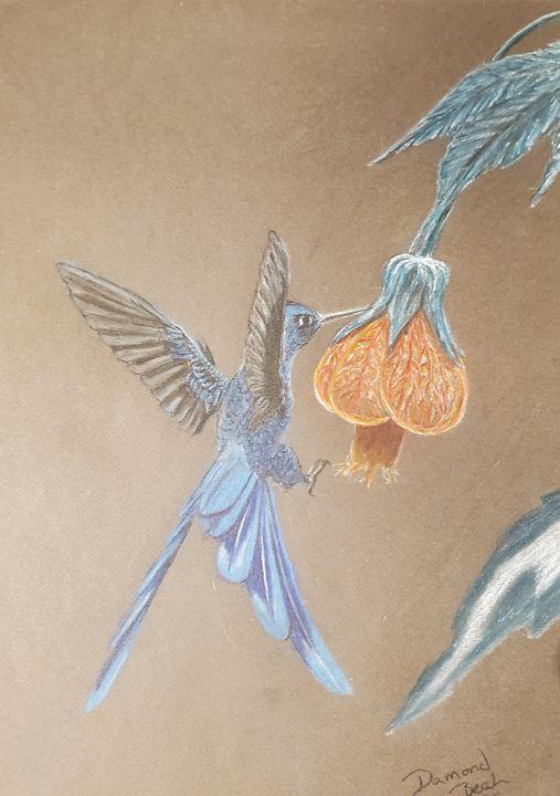 Blue hummingbird - Damond seth beal