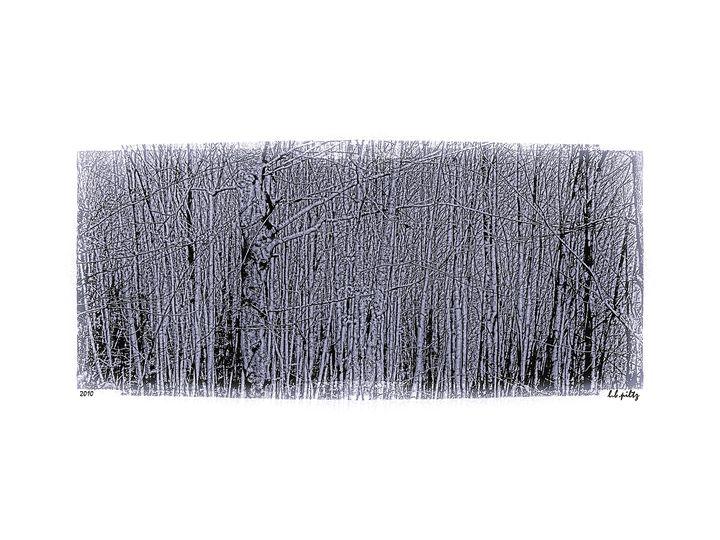 Trees in gray - Lothar Boris Piltz