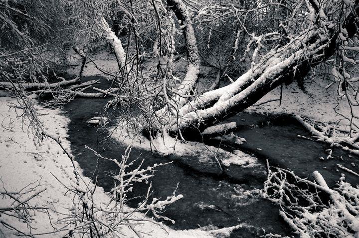 Winter Scene - Lothar Boris Piltz