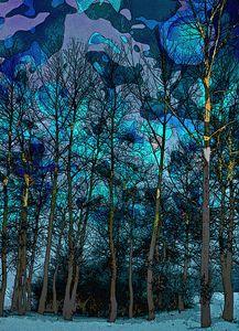 Trees in Blue - Lothar B. Piltz