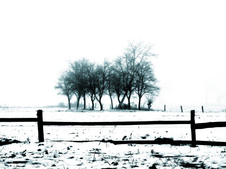 Winter Solitude - Lothar Boris Piltz