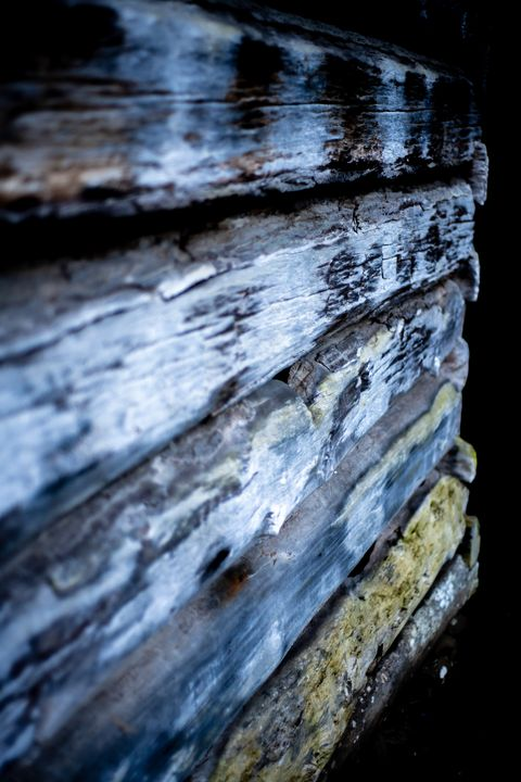 Colors of Old Wood - Through Jenn's Lens Photography