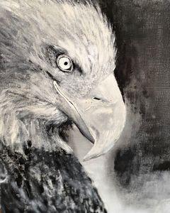 American Eagle - Scott R Henderson Art