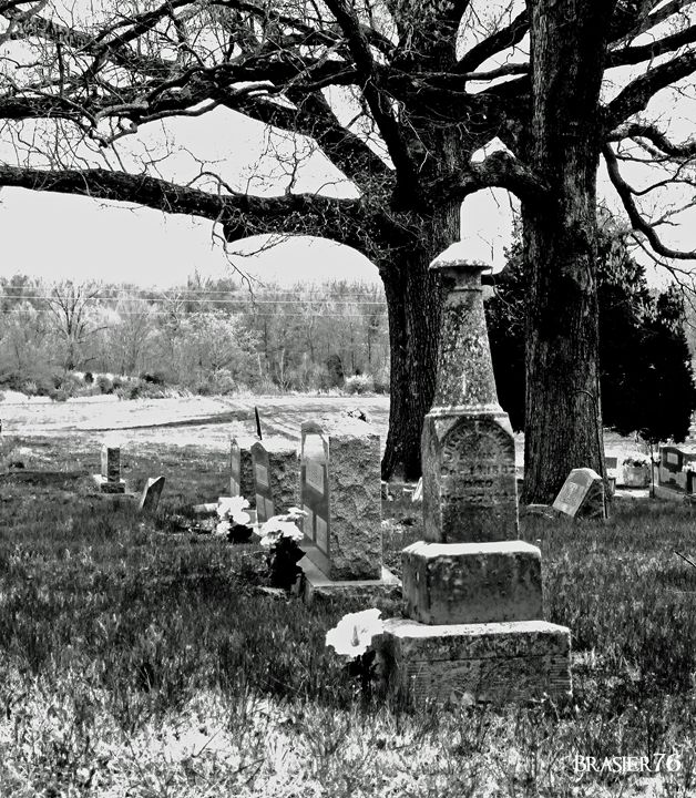 Tombstones and Trees - Brasier76