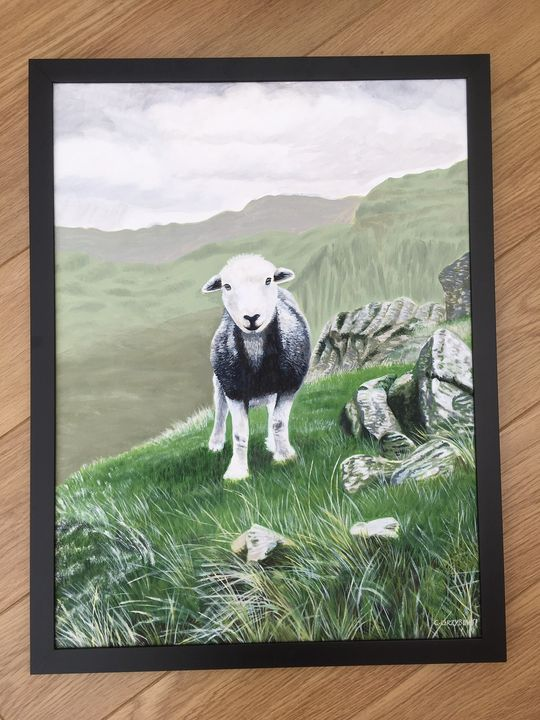 Herdwick Framed Original art work - CNG Art