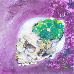 Peyote Skull