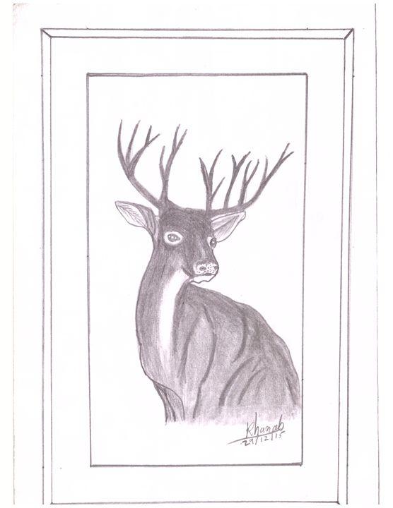 the animal deer - Khanab