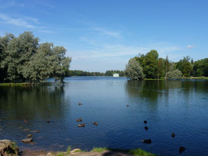 Гатчинский парк, Белое озеро - Peter Pinchuk