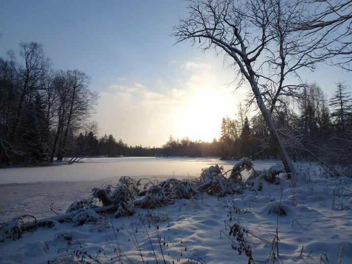 Зимнее утро - Peter Pinchuk