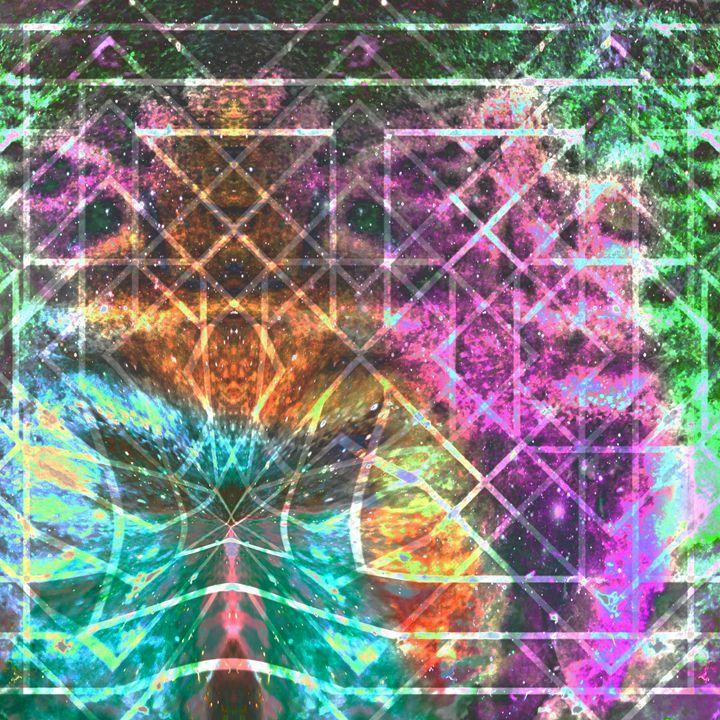 Starry Square - Metazoa Art