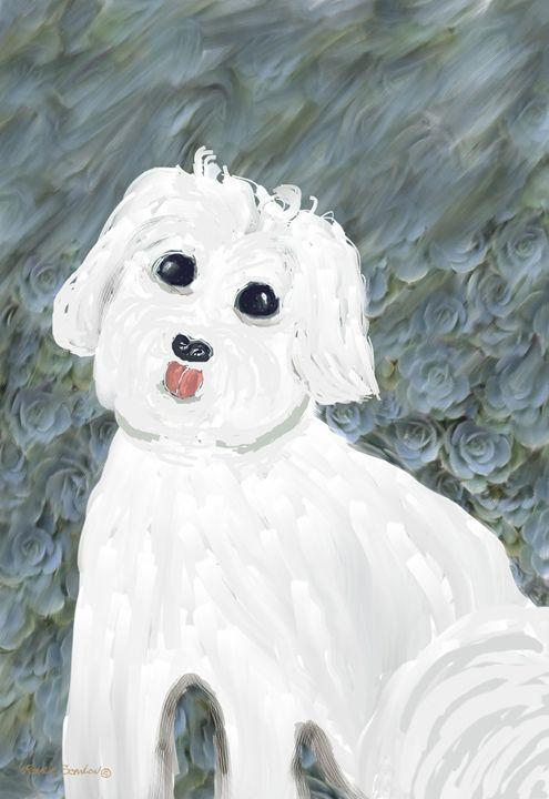 Chubby Puppy - RosalieScanlonPhotography&Art