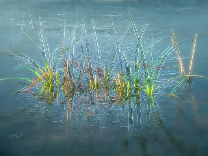Electric Grass - RosalieScanlonPhotography&Art