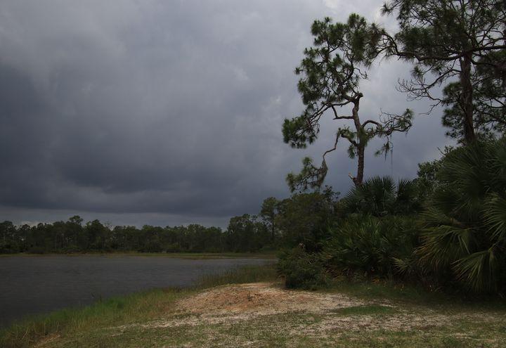 Stormy Nature - RosalieScanlonPhotography&Art