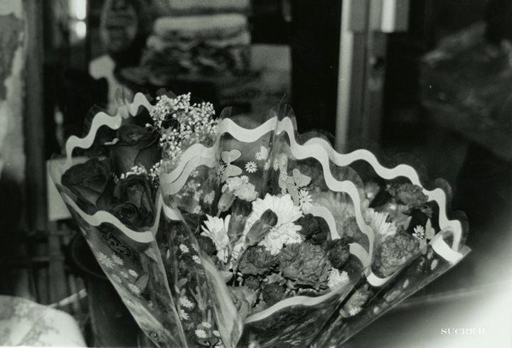Flores - SUCRE ROUX GALLERIA