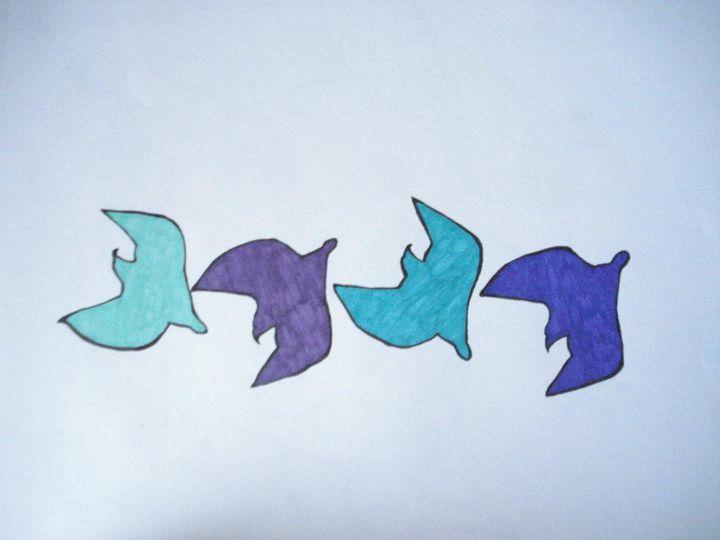 seagulls - Chels