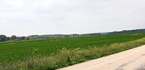 An amazing roadside view