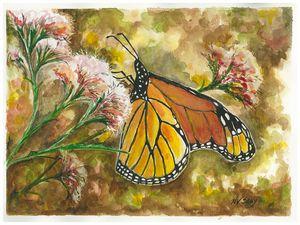 Monarch on Joe Pye