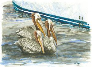 Pelican Flotilla