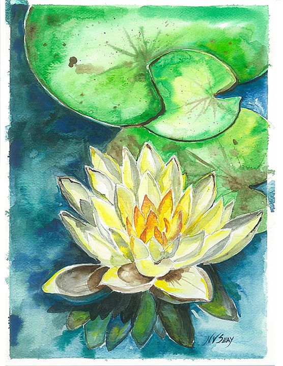 Yellow Waterlily - Artscape