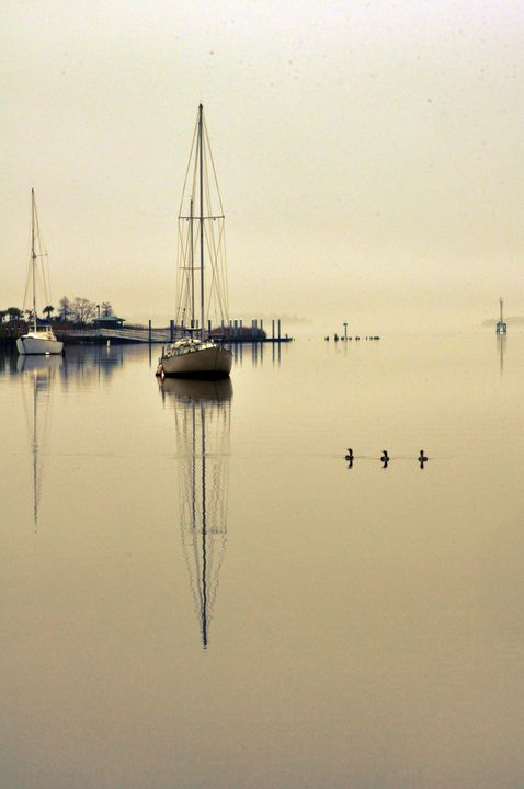 Foggy Morning on the Water - Artscape