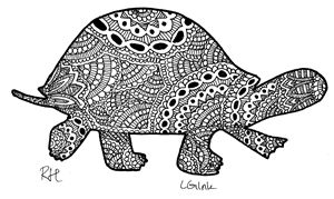 turtle zentangle motive