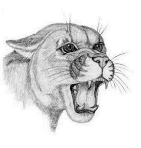 Cougar - BrandyCraft